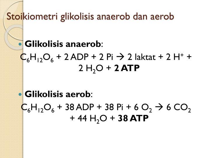 Stoikiometri glikolisis anaerob dan aerob