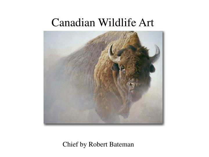 Canadian Wildlife Art