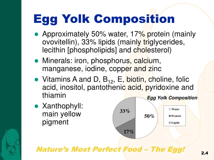 Egg Yolk Composition
