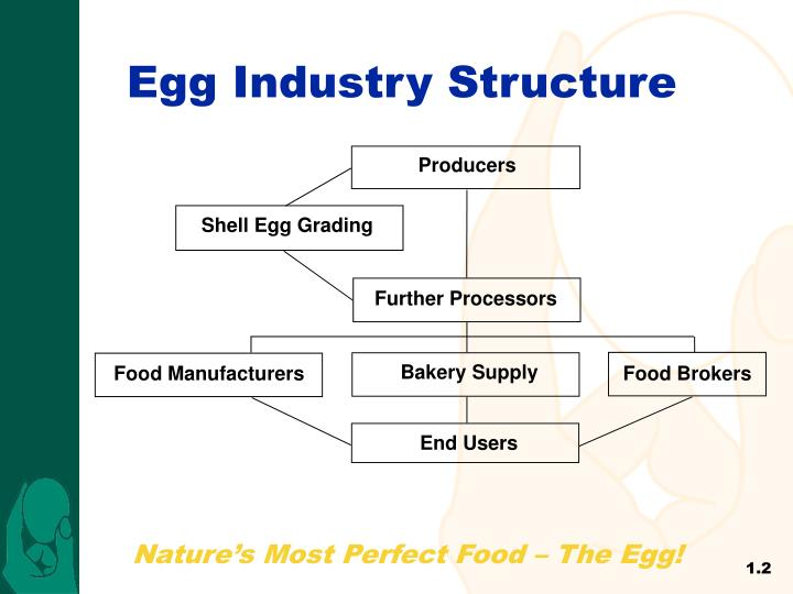 Egg Industry Structure