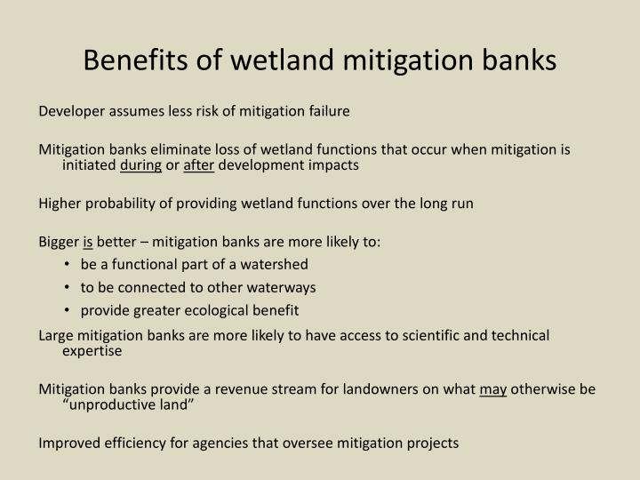 Benefits of wetland mitigation banks