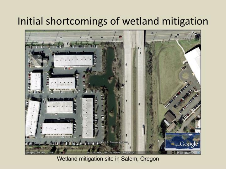 Initial shortcomings of wetland mitigation