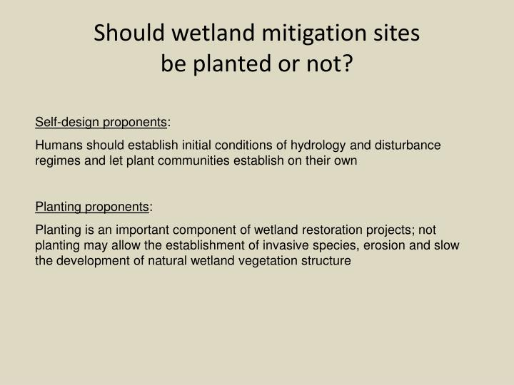 Should wetland mitigation sites
