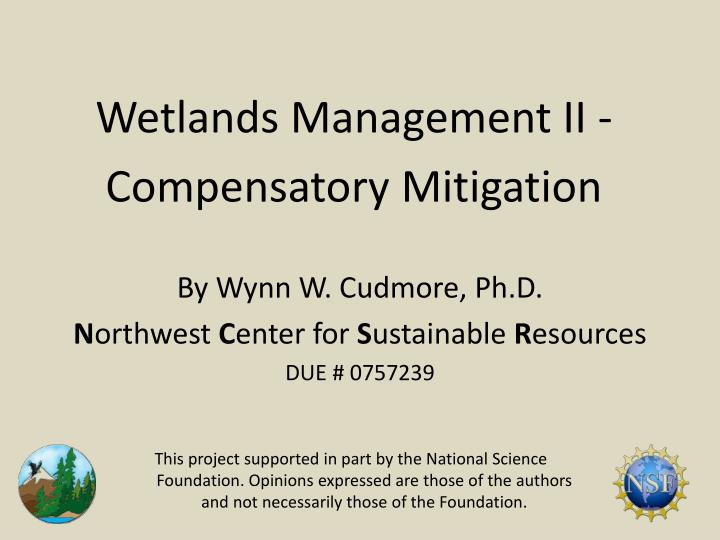 Wetlands Management II -