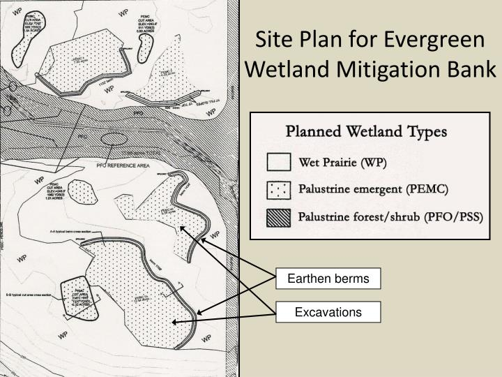 Site Plan for Evergreen Wetland Mitigation Bank