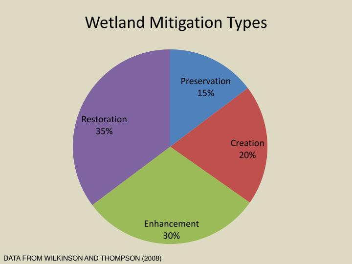 Wetland Mitigation Types