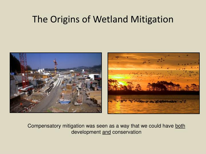 The Origins of Wetland Mitigation