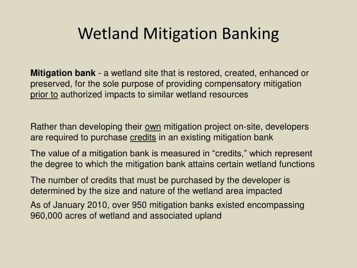 Wetland Mitigation Banking