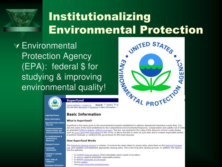 Institutionalizing Environmental Protection