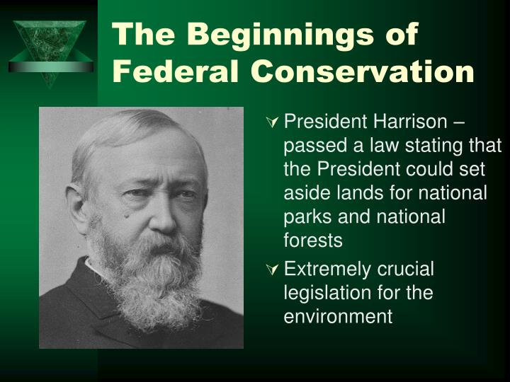 The Beginnings of Federal Conservation