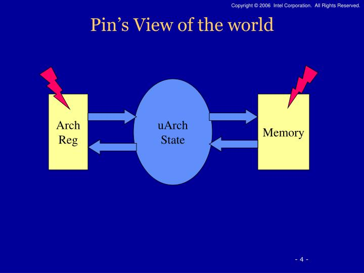 Pin's View of the world