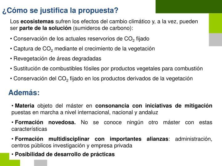 ¿Cómo se justifica la propuesta?