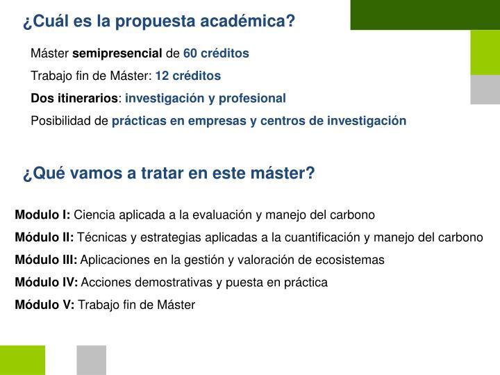 ¿Cuál es la propuesta académica?
