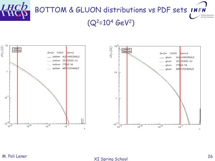 BOTTOM & GLUON distributions vs PDF sets
