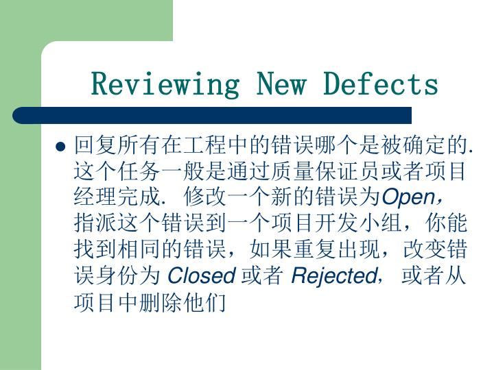 Reviewing New Defects