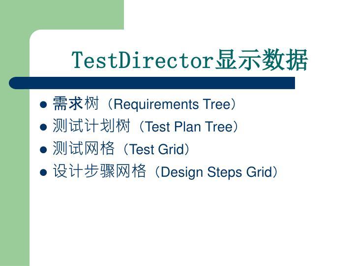 TestDirector