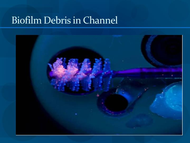 Biofilm Debris in Channel