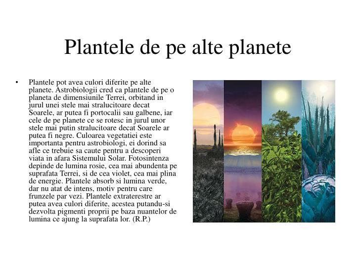 Plantele de pe alte planete