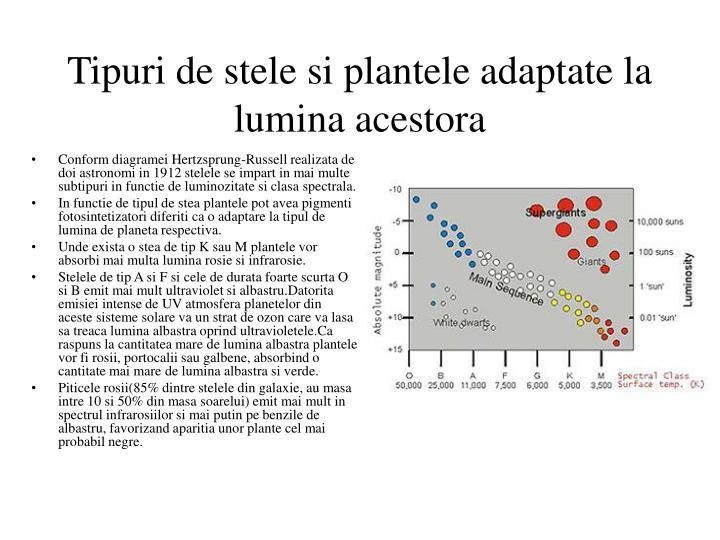 Tipuri de stele si plantele adaptate la lumina acestora