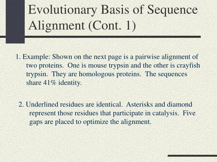 Evolutionary Basis of Sequence Alignment (Cont. 1)