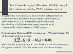 the point accepted mutation pam model of evolution and the pam scoring matrix