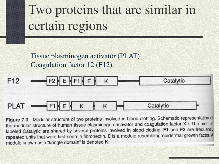 Two proteins that are similar in certain regions