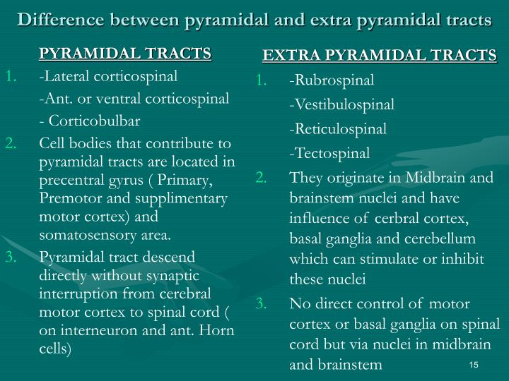 Difference between pyramidal and extra pyramidal tracts