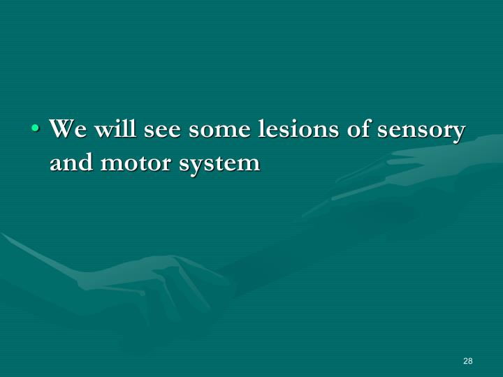 We will see some lesions of sensory and motor system