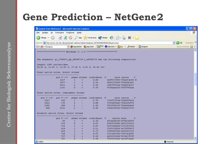 Gene Prediction – NetGene	2