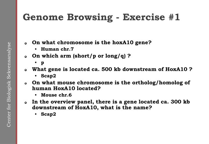 Genome Browsing - Exercise #1