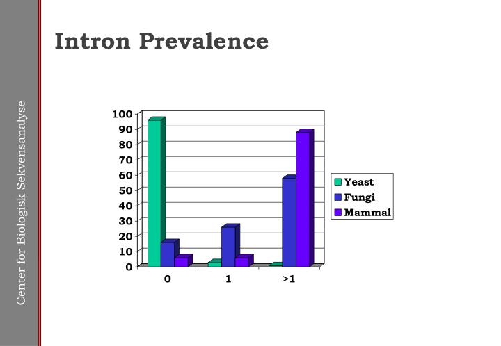 Intron Prevalence