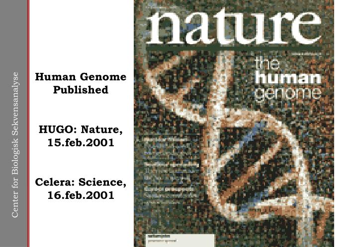 Human Genome Published