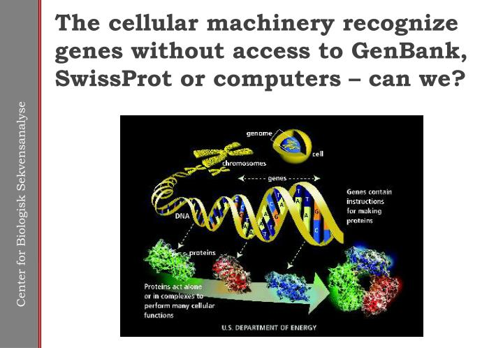 The cellular machinery recognize genes without access to GenBank, SwissProt or computers – can we?