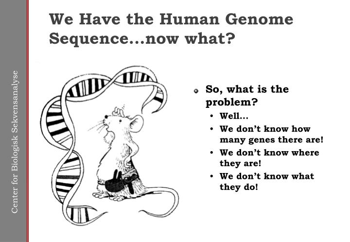 We have the human genome sequence now what