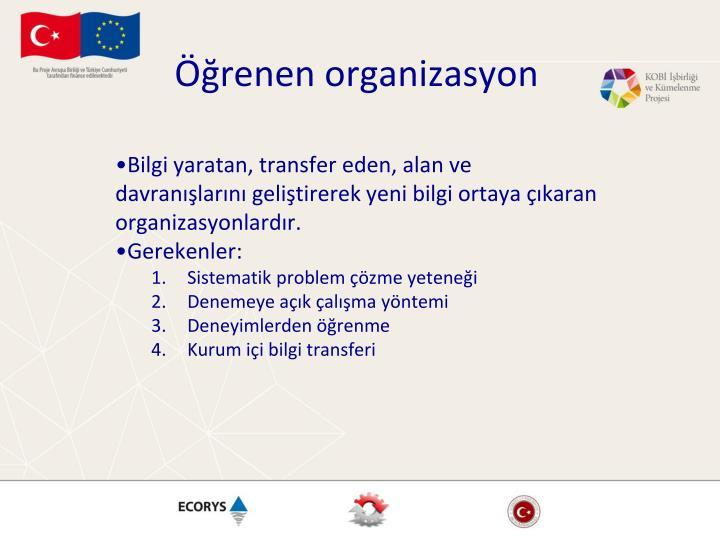 Öğrenen organizasyon