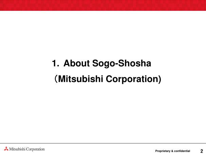 About Sogo-Shosha