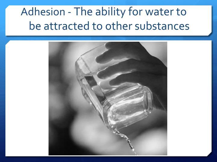 Adhesion -