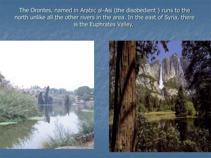 The Orontes, named in Arabic al-Asi (the disobedient ) runs to the north unlike all the other rivers in the area. In the east of Syria, there is the Euphrates Valley,