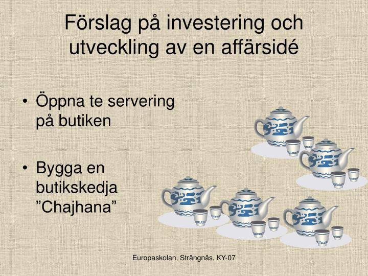 Förslag på investering och utveckling av en affärsidé