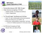 nsf award cluster exploratory clue