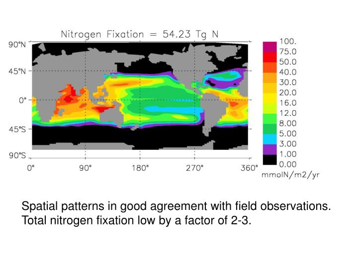 Spatial patterns in good agreement with field observations.