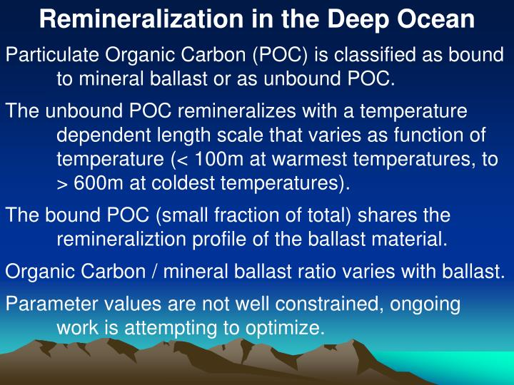 Remineralization in the Deep Ocean