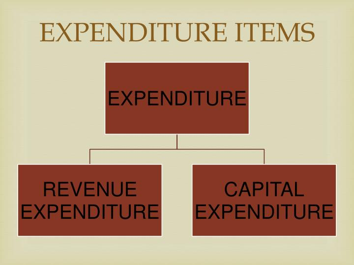 EXPENDITURE ITEMS
