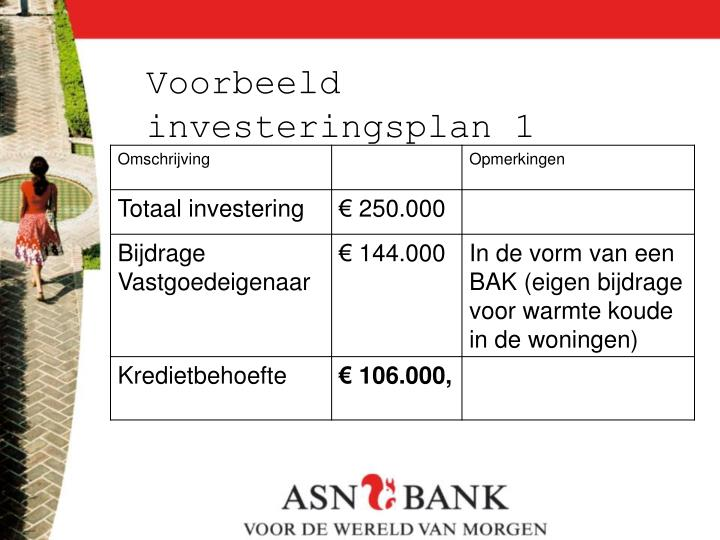 Voorbeeld investeringsplan 1