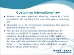 custom as international law2
