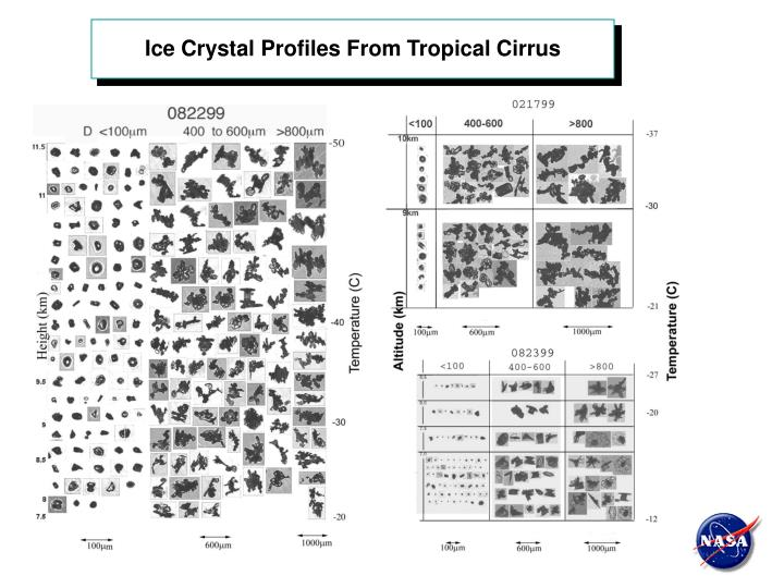 Ice Crystal Profiles From Tropical Cirrus