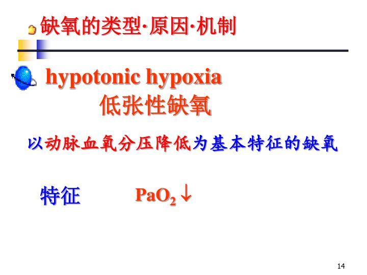 缺氧的类型
