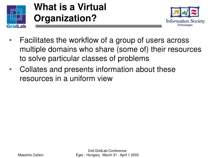 What is a Virtual Organization?