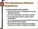 the moment to moment experience1