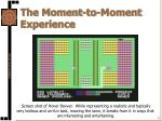 the moment to moment experience2